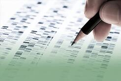 Genetic Counseling: What you Should Know