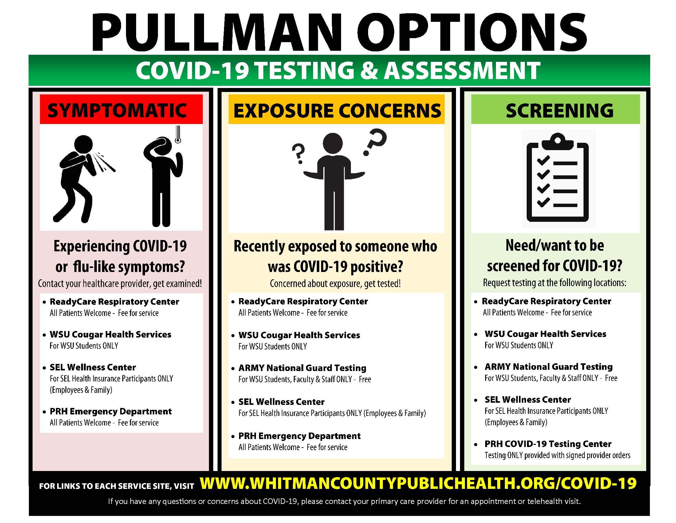 Pullman COVID19 - Options Oct 8 2020 - FINAL (1)
