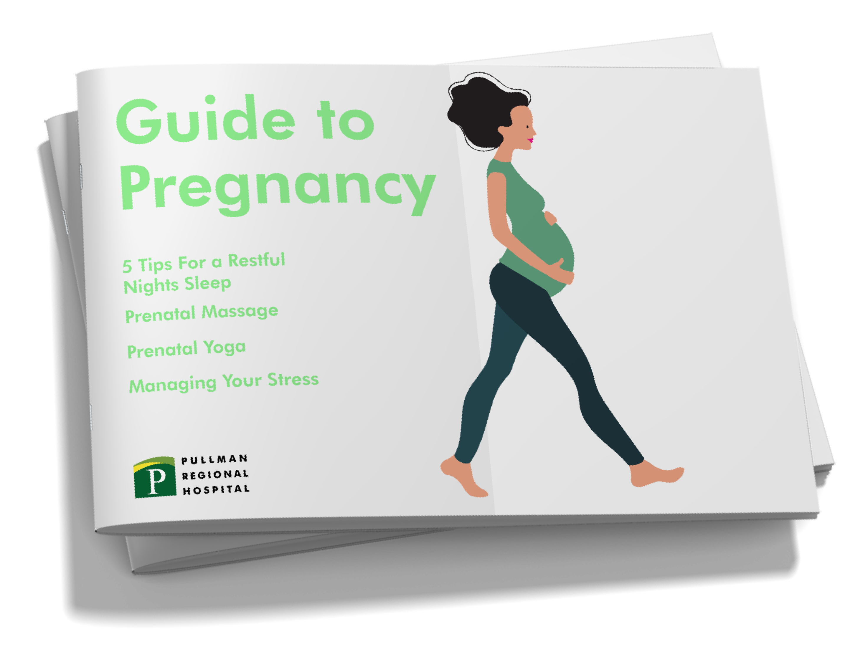 Guide To Pregnancy Download Cover Images-02