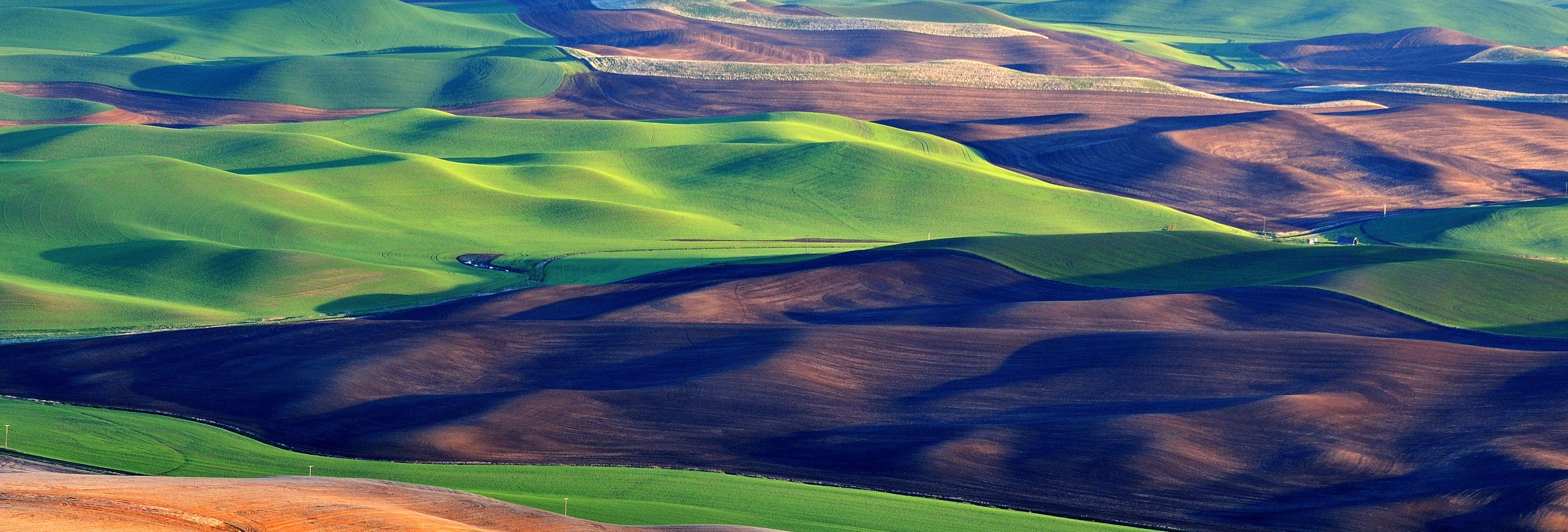 Palouse Header